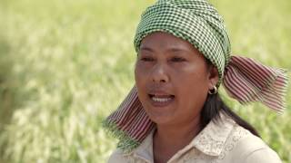 Development in Cambodia thumbnail