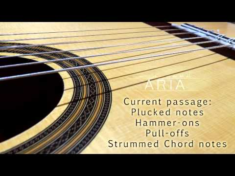 ARIA Sounds Classical Nylon String Guitar Kontakt Instrument/VST