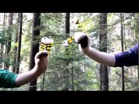 Bill the Banana Slug Episode 1: Tree Types