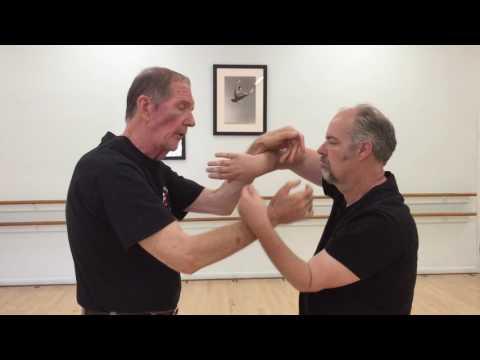 Alan Lamb Wing Chun Tok Sau Demonstration