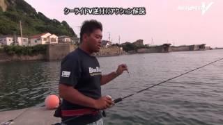 スロージギングの釣り方:水中映像&ロッドワーク。ジグ逆付け / SeaRideV by BlueBlue thumbnail