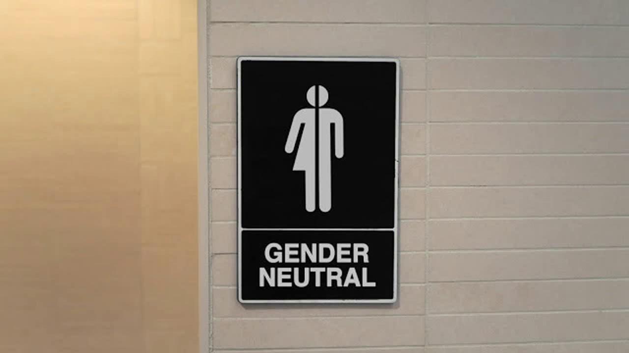 Видео из туалетов учебных заведений скрытая камера