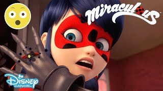 Miraculous | Season 2 Exclusive Sneak Peek: Ladybug Vs Cat Noir?! | Official Disney Channel UK