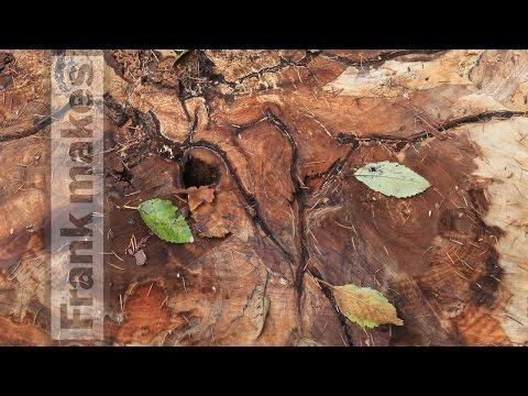 maple wood slabs