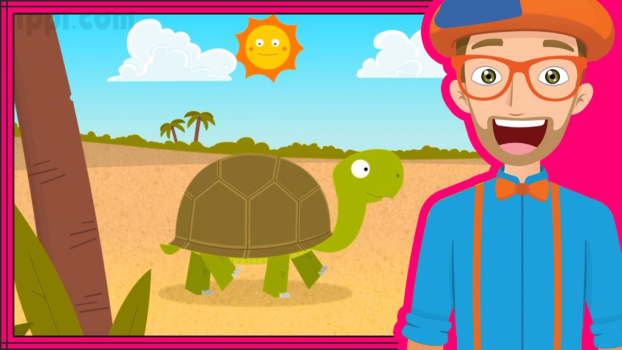 The Tortoise Song By Blippi Animals For Toddlers