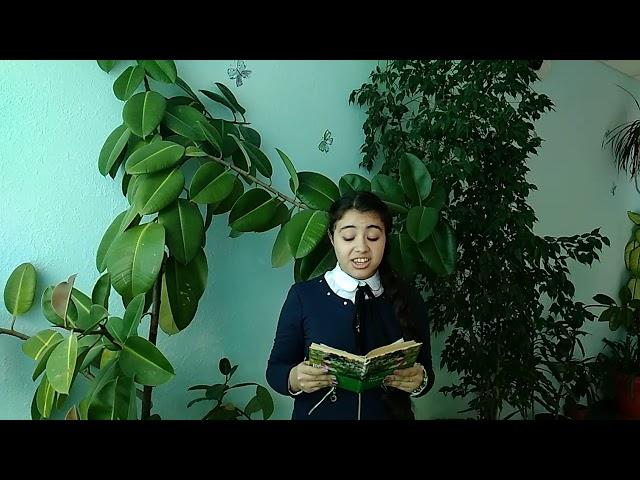 Изображение предпросмотра прочтения – НаргизКеримова читает произведение «Ася» И.С.Тургенева