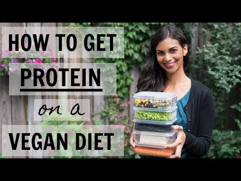 HOW DO VEGANS GET PROTEIN? | top vegan protein sources | part 1