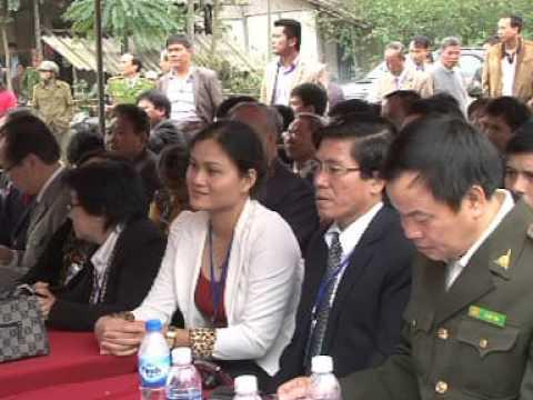 Nhà máy liên hiệp chế biến gỗ xuất khẩu rừng bền vững toàn cầu tại huyện Quan Sơn tỉnh Thanh Hóa