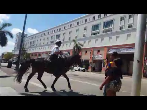 Bike Ride Through Little Havana, Miami FL