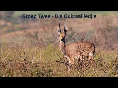 Groep Twee - Die Oukraalliedjie