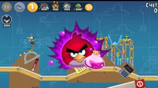 Angry Birds Birdday 5 All levels