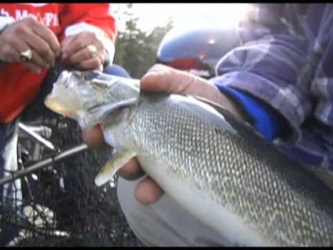 Discovering - Spring Walleyes On Lake Gogebic With Fishing Pro Mark Martin.