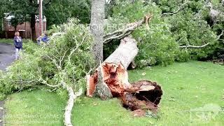 07-23-19 Yarmouth, MA - Unconfirmed - Tornado Damage Cape Cod Motel/ Large Tree Down On Minivan & Ho