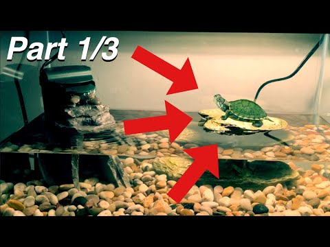 SETTING UP MY 10 GAL. TURTLE TANK (Part 1)