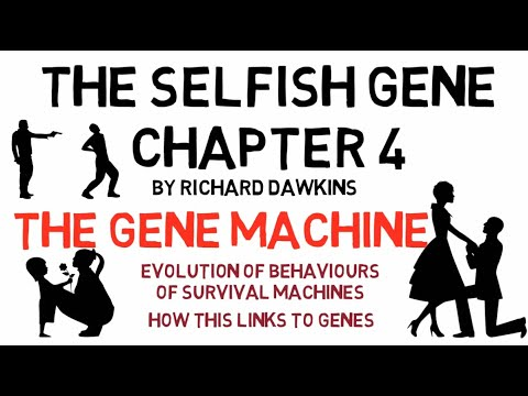 THE SELFISH GENE By Richard Dawkins - Chapter 4 Animated Summary (The Gene Machine)