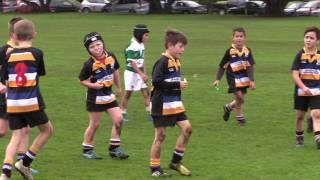Border Junior Rugby Under 8's First Win 2017
