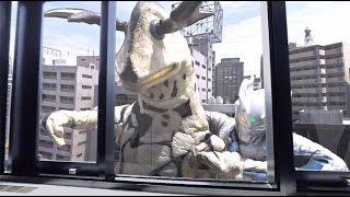 シリーズ初 360度VR特撮『ウルトラマンゼロVR』体験PV!『ウルトラファイトVR』も! thumbnail