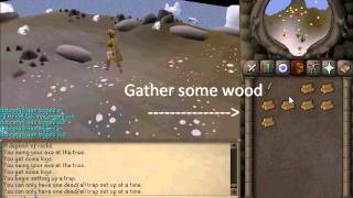 fastest way to hunt sabre tooth kebbits 1mg runescape 2007 osrs