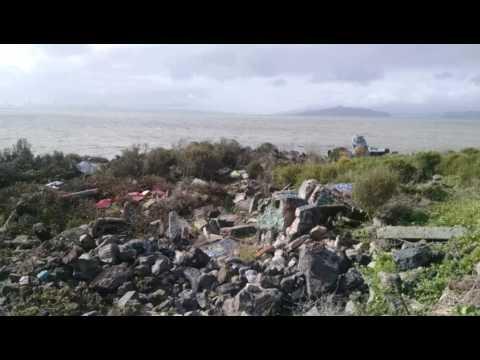 Albany Bulb - SF Bay