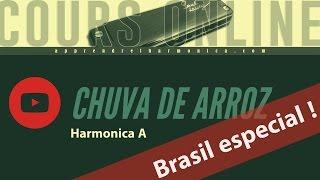 Luan Santana - Chuva de Arroz – Harmonica A - Brasil Especial !