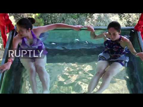 China: Brave bathers take a dip in world's first high-altitude pool