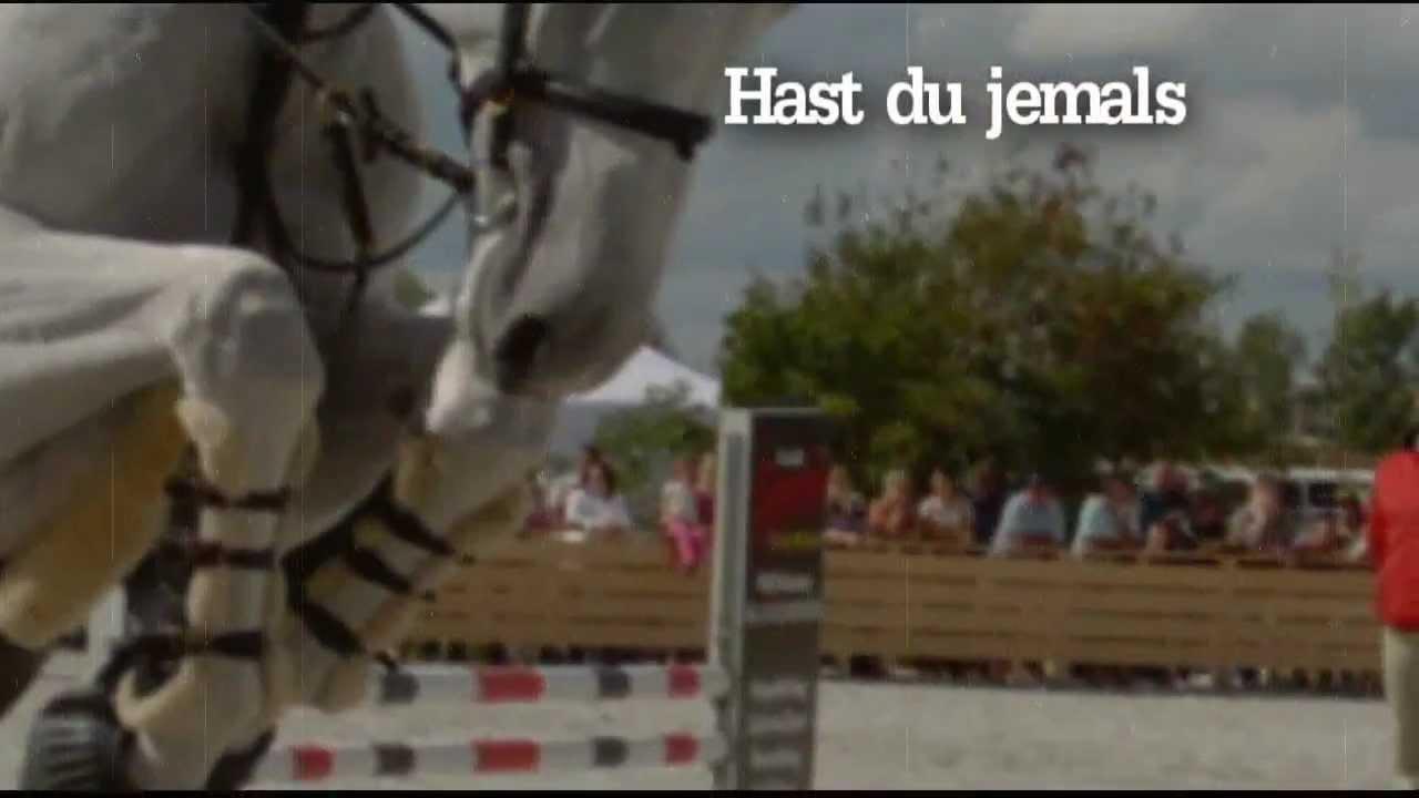 du denkst also reiten ist leicht? - youtube