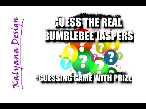 Guess the real bumblebee jasper! - guessing game with prize 464