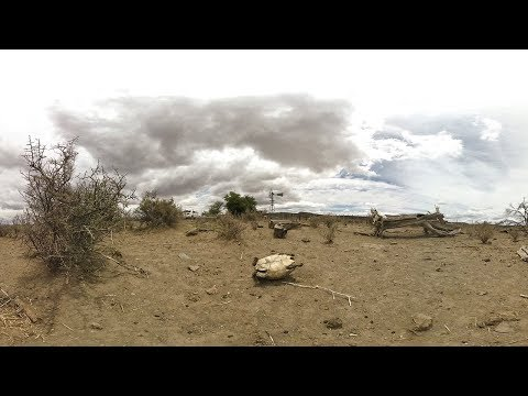 Surviving the drought on a Karoo farm | A 360 video story