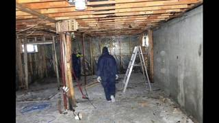 Mold Remediation in Calgary Alberta 403-669-9796