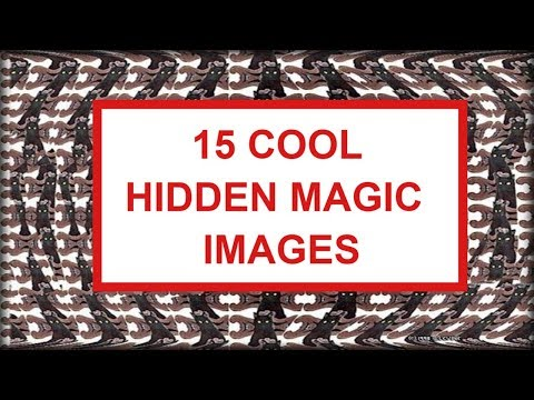 15 Stereograms And Hidden Images  Magic Eye Pictures