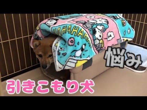 N@K@LUNOK N@B@ @KO NG T@MOD ? | @NONG L@S@ | #053 from YouTube · Duration:  6 minutes 31 seconds