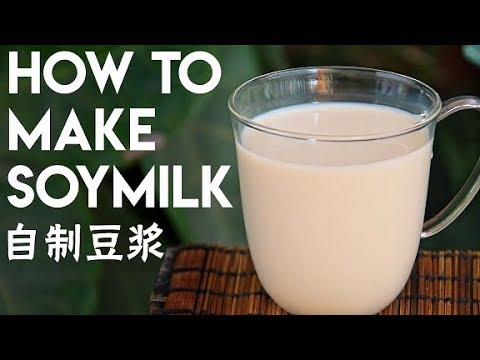 How to Make Soy Milk from Scratch 豆浆