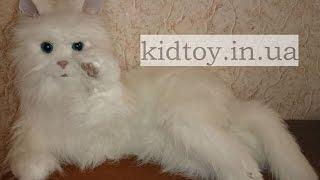 Видео обзор детские игрушки - Интерактивные котята, как живые
