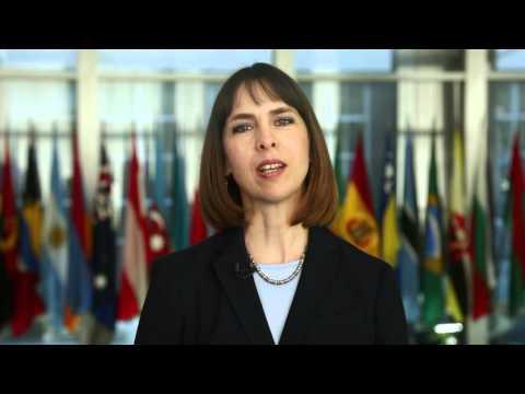 Meet U.S. Ambassador to the Kingdom of Swaziland Lisa Peterson