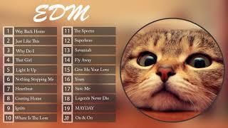 NHẠC EDM MÈO CÀY RANK | NHẠC EDM MÈO GÂY NGHIỆN [#5] EDM CAT
