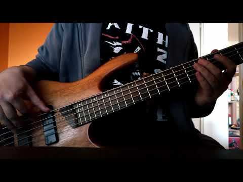 Digging the grave (bass cover)