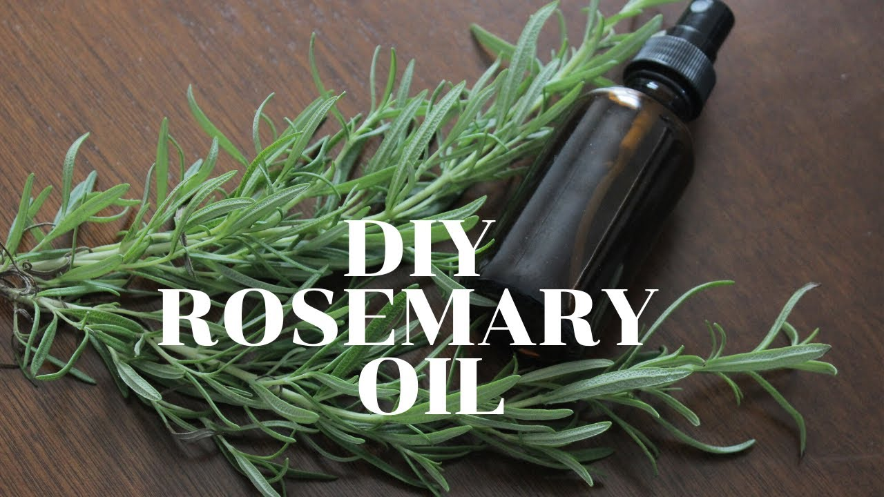 Download DIY Rosemary Oil for Hair | Rosemary Oil For Extreme Hair Growth!