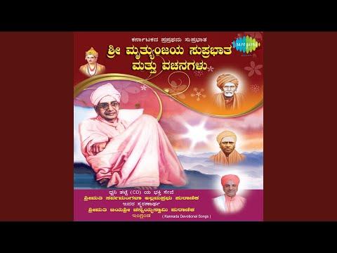 Swami Ninnu Shashwat Ninnu Basaveshwar Vachan