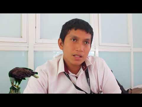 Introduce Indonesian Culture ; Bataknese, Torajanese and Sundanese