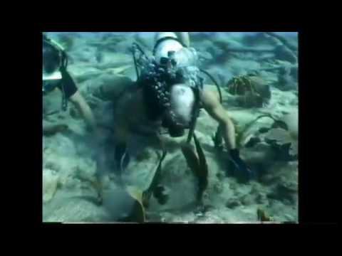 Arrecife Alacranes 1-2