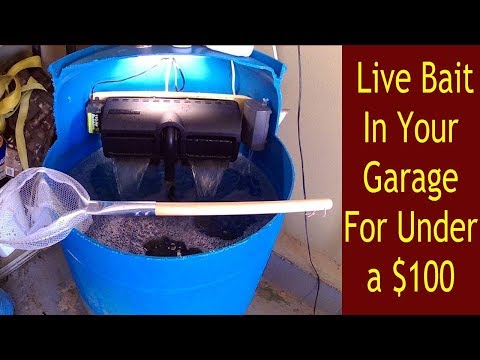 How To Build A Bait Tank For Your Garage. DIY