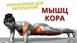 Укрепляем мышцы кора упражнения для спины талии пресса планка фитнес тренировка