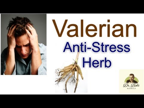 The Stress Relief Herb