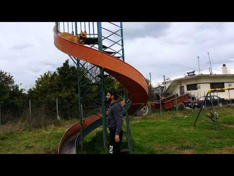Pitboull love  spiral slide.pitboull σε τσουλήθρα