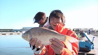 #240 海の大物師・へらぶな釣りに初挑戦!椎の木湖&三名湖のへらぶな thumbnail