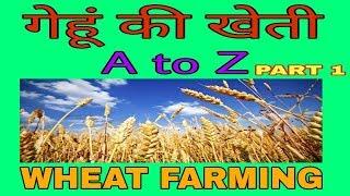 गेहूं की खेती [PART-1] | Wheat Farming