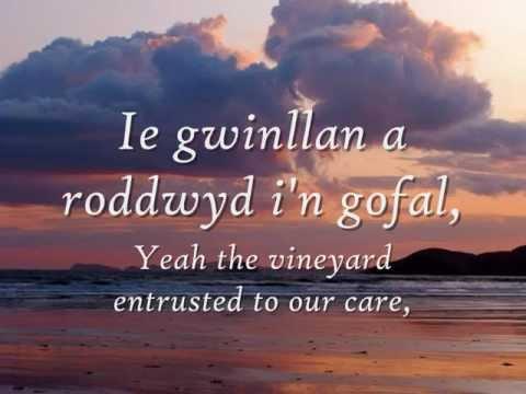 Gwinllan a Roddwyd - Dafydd Iwan (geiriau / lyrics)