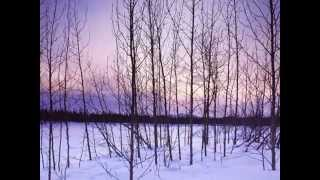 Sting- The Hounds of Winter