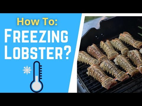 How To Freeze And Preserve Your Lobster Tail
