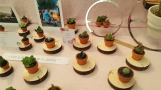 다육이 콩분(명함꽂이)고양 국제 꽃 박람회(2017년♡…